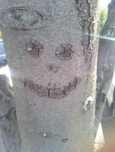 smilingtree