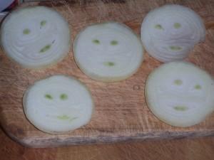 onion-face-365