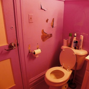 pink-potty-peeling-paint-smiley