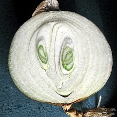 onion-smiley-3