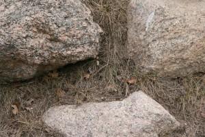 rocksmiley_img_1254